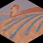 Yana BYSTROVA, Terre de lavande